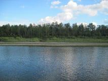 Der Fluss ist ruhig Geringfügige Kräuselungen Wald stockbild