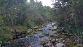 Der Fluss ist sichtbar und verborgen stockbild