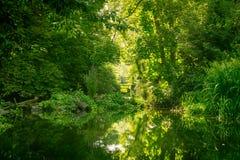Der Fluss-Kran in West-London stockbild