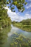Der Fluss Stour, Warwickshire Stockbild