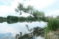 Der Fluss Svisloch lizenzfreies stockbild