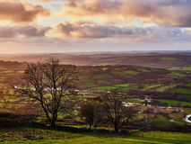 Der Fluss und das Tal Teifi nahe Llandewi Brefi Wales Stockfoto