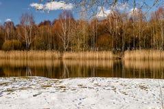 Der Fluss und der Wald im Vorfrühling Lizenzfreies Stockfoto