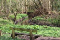 Der Fluss zahm nahe Tamworth stockfoto
