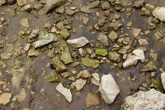 Der Flussufer mit nassen Steinen auf dem Sand Stockfotos