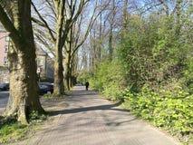 Der Frühling, der in Recklinghausen-Stadt kommt Stockfoto