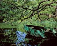 Der Frühling von Ohrid. Lizenzfreies Stockfoto