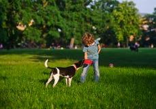 Der freche Junge spielt mit Hündchen auf einer grünen Lichtung im Park Stockfotografie