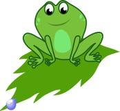 Frosch auf einem Blatt stock abbildung