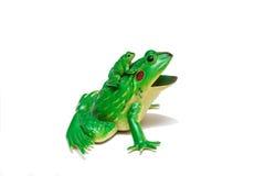 Der Frosch mit dem Frosch Spielzeugkinder Lizenzfreies Stockbild