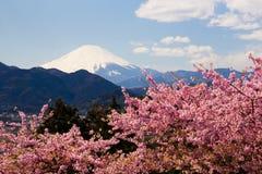 Der Fujisan mit Kawazu-Kirschblüten in voller Blüte Stockfotografie