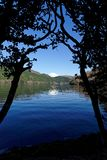 Der Fujisan silhouettierte zwischen Bäumen lizenzfreies stockfoto
