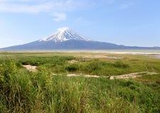 Der Fujisan und grüne Wiesen stockfotografie