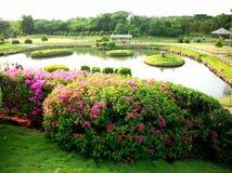 Der Garten 1 Stockbild