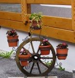 Der Garten Stockfotos