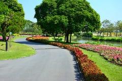 Der Garten hat einen bunten Blumenkanalgehweg Stockfotografie