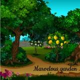 Der Garten mit Zitrusfruchtbaum und grünen Bäumen vektor abbildung