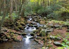 Der Gebirgsbach, der über Moos fließt, bedeckte Felsen mit Herbstlaub stockbilder