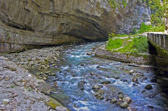 Der Gebirgsfluss, der unter den Felsen in Sommer fließt stockfotos