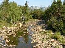 Der Gebirgsfluss die steinige Küste im hölzernen Sommer Russland Sou Lizenzfreie Stockfotografie