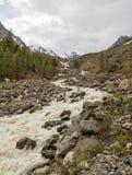 Der Gebirgsfluss, gegen die waldigen Berge, entstehend für Stockfotografie