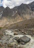 Der Gebirgsfluss, gegen die waldigen Berge, entstehend für Stockfotos