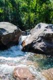 Der Gebirgsfluss in Korsika Stockfoto