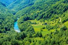 Der Gebirgsfluss Tara und die Schlucht und seine Landschaft im Norden von Montenegro Stockfoto