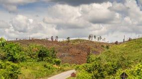 Der gebrannte Hügel Lizenzfreies Stockbild