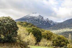 Der gefrorene Berg Stockbilder