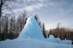Der gefrorene Geysir im Holz Stockfoto