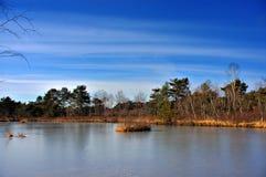 Der gefrorene Teich. lizenzfreie stockfotografie