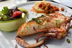 Der gegrillte Kalmarteller ist von der Mittelmeerküche Lizenzfreie Stockbilder