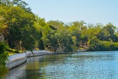 Der Gehweg entlang Tampa Bay bei Philippe Park im Sicherheits-Hafen, Florida Stockbilder