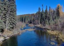Der gekrümmter Fluss-nahe Bear See herein BC stockbilder