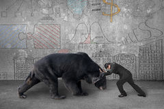 Der Geschäftsmann, der gegen schwarzen Bären mit Geschäftskonzept tun kämpft Stockfoto