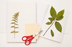 Der getrocknete Zweig der wilden Kirsche und Farn auf dem Buch Lizenzfreie Stockfotografie