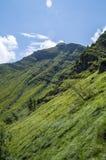 Der Gipfel des Corno-alle stufen im August ein stockbild