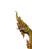 Der goldene Schlangenkopf Stockbilder
