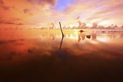 Der goldene Sonnenuntergang Stockfotos