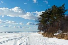 Der Golf der Finnland-Küste im frühen Frühling Lizenzfreie Stockfotos