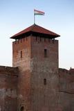 Der gotische Schlosskontrollturm von Gyula Stockfotos