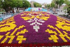 Der größte Teppich von Tulpen die Welt in Sultanahmet, Istanbul Stockbild