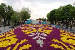 Der größte Teppich von Tulpen die Welt in Sultanahmet, Istanbul Lizenzfreie Stockfotografie