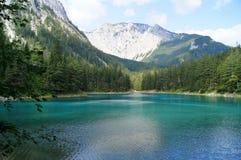Der grüne See in Tragoess, Österreich Stockbilder