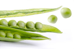 Der grüne Sprung Stockfotografie