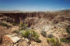 Der Grand Canyon stockbilder