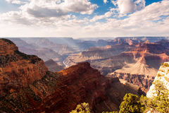 Der Grand Canyon stockfoto