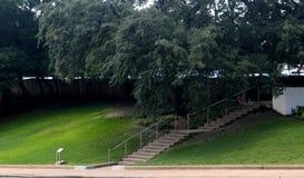 Der grasartige Hügel Lizenzfreies Stockbild