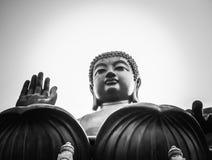 Der Gratis-Buddha Stockfotografie